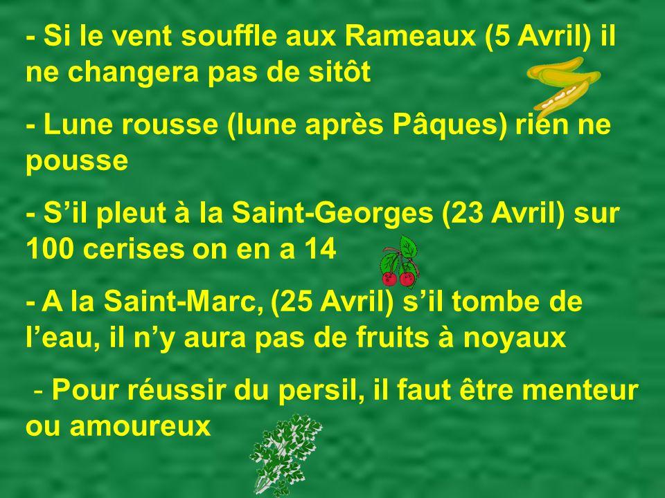 - Si le vent souffle aux Rameaux (5 Avril) il ne changera pas de sitôt - Lune rousse (lune après Pâques) rien ne pousse - Sil pleut à la Saint-Georges