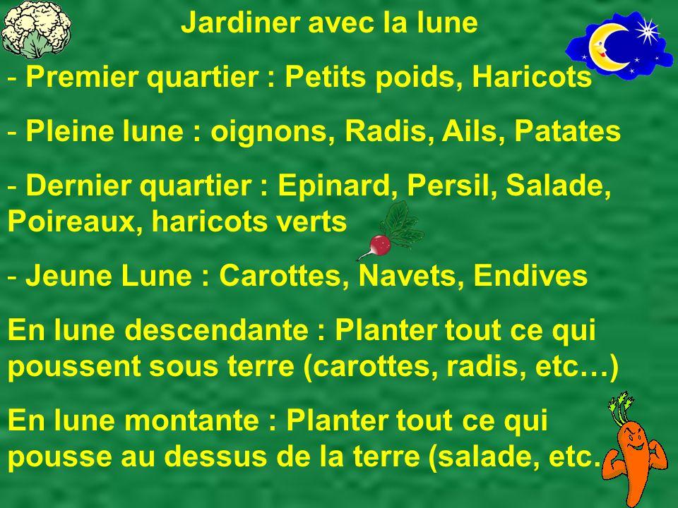 Jardiner avec la lune - Premier quartier : Petits poids, Haricots - Pleine lune : oignons, Radis, Ails, Patates - Dernier quartier : Epinard, Persil,