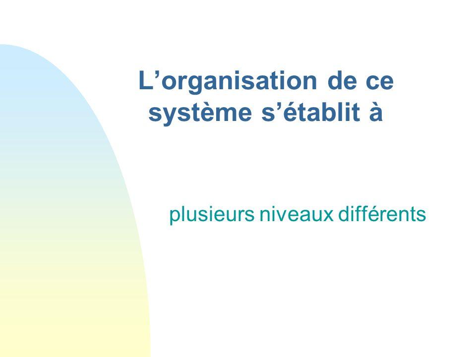 Le texte est une n liens structure un système organisé Ce qui organise porte plusieurs noms : n relations n transitions n articulations