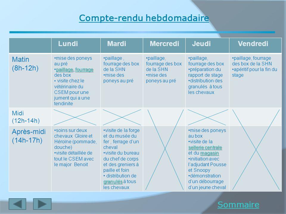 Compte-rendu hebdomadaire Sommaire Lundi Mardi Mercredi Jeudi Vendredi Matin (8h-12h) mise des poneys au pré paillagepaillage, fourragepaillage, fourr