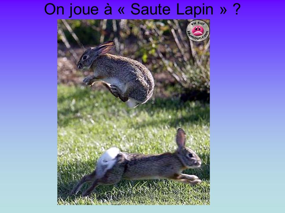 On joue à « Saute Lapin »