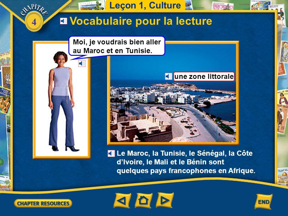 4 Vocabulaire pour la lecture Leçon 1, Culture une zone littorale Le Maroc, la Tunisie, le Sénégal, la Côte dIvoire, le Mali et le Bénin sont quelques pays francophones en Afrique.