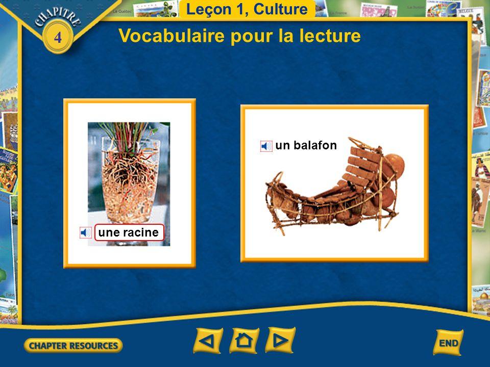 4 Vocabulaire pour la lecture Leçon 1, Culture un balafon une racine