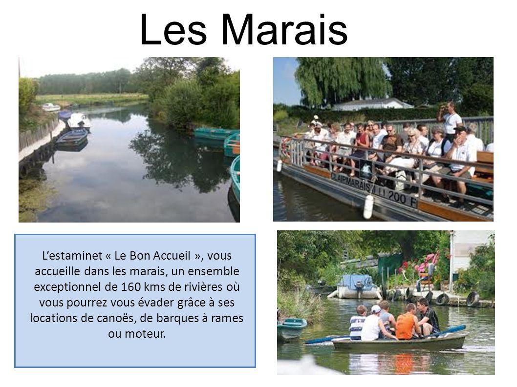 Les Marais Lestaminet « Le Bon Accueil », vous accueille dans les marais, un ensemble exceptionnel de 160 kms de rivières où vous pourrez vous évader
