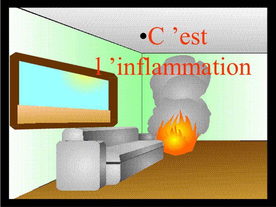 29 INCendies – INC 2 CORPS DEPARTEMENTAL DES SAPEURS-POMPIERS DE LHERAULT S Les premières minutes Une source de chaleur X émet des rayonnements.
