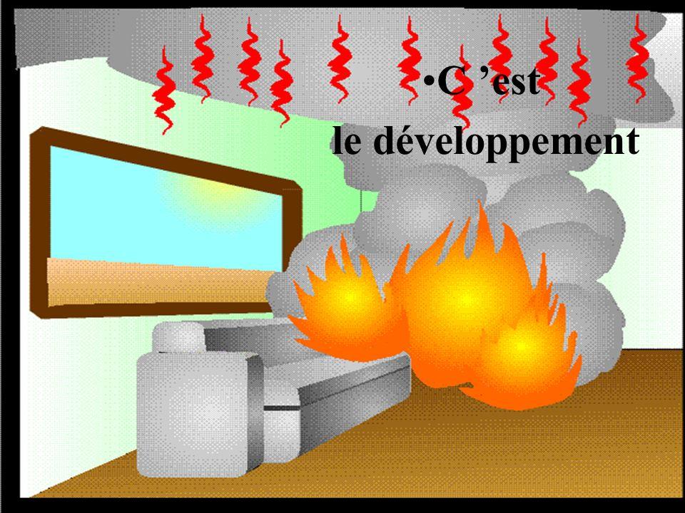 32 INCendies – INC 2 CORPS DEPARTEMENTAL DES SAPEURS-POMPIERS DE LHERAULT S Dans un second temps Le feu commence à prendre de lampleur.Le feu commence à prendre de lampleur.