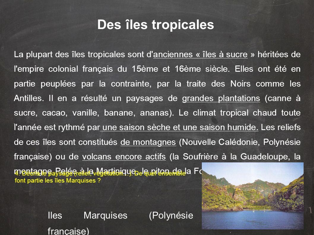 Des îles tropicales La plupart des îles tropicales sont d'anciennes « îles à sucre » héritées de l'empire colonial français du 15ème et 16ème siècle.