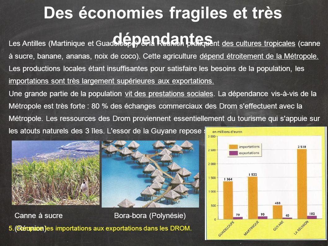 Des économies fragiles et très dépendantes Les Antilles (Martinique et Guadeloupe) et la Réunion pratiquent des cultures tropicales (canne à sucre, banane, ananas, noix de coco).