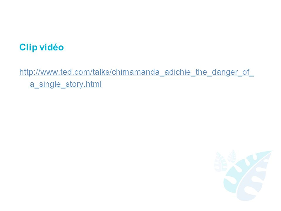 Clip vidéo http://www.ted.com/talks/chimamanda_adichie_the_danger_of_ a_single_story.html
