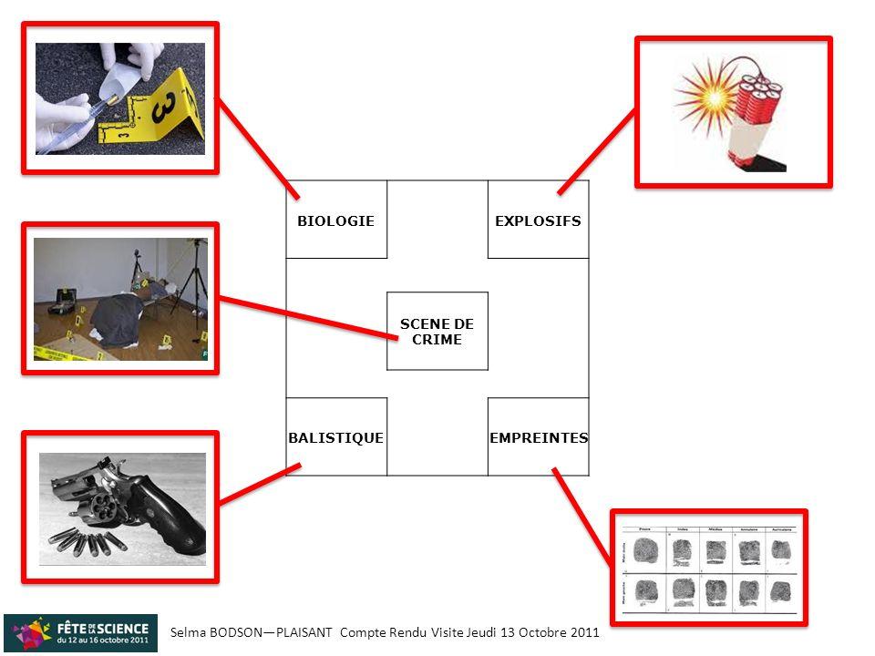 Selma BODSONPLAISANT Compte Rendu Visite Jeudi 13 Octobre 2011 BIOLOGIE EXPLOSIFS SCENE DE CRIME BALISTIQUE EMPREINTES La scène de crime, située au milieu du stand de lINPS, présente une victime et un certain nombre dindices tous susceptibles dexpliquer ce qui sest réellement passé : - un révolver - une douille de balle - un téléphone portable, - une empreinte de chaussure - un baton de TNT - du sang - un cendrier - une verre avec des empreintes - … Les stands autour de la scène permettent de comprendre comment se passe les analyses.
