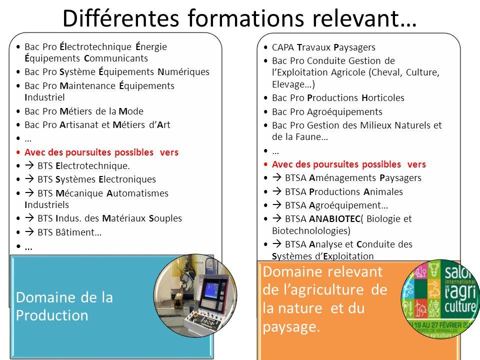 CAP Petite Enfance CAPA Services en Milieu Rural* Bac Pro Accompagnement Soins et Services à la Personne Bac Pro Serv.