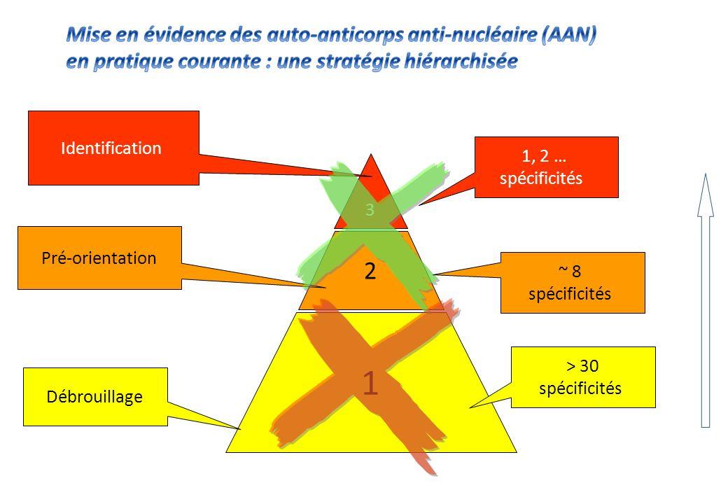 « Identification » « Pré-orientation » « Débrouillage » Diagnostic biologique des Connectivites Existe-t-il des Ac .