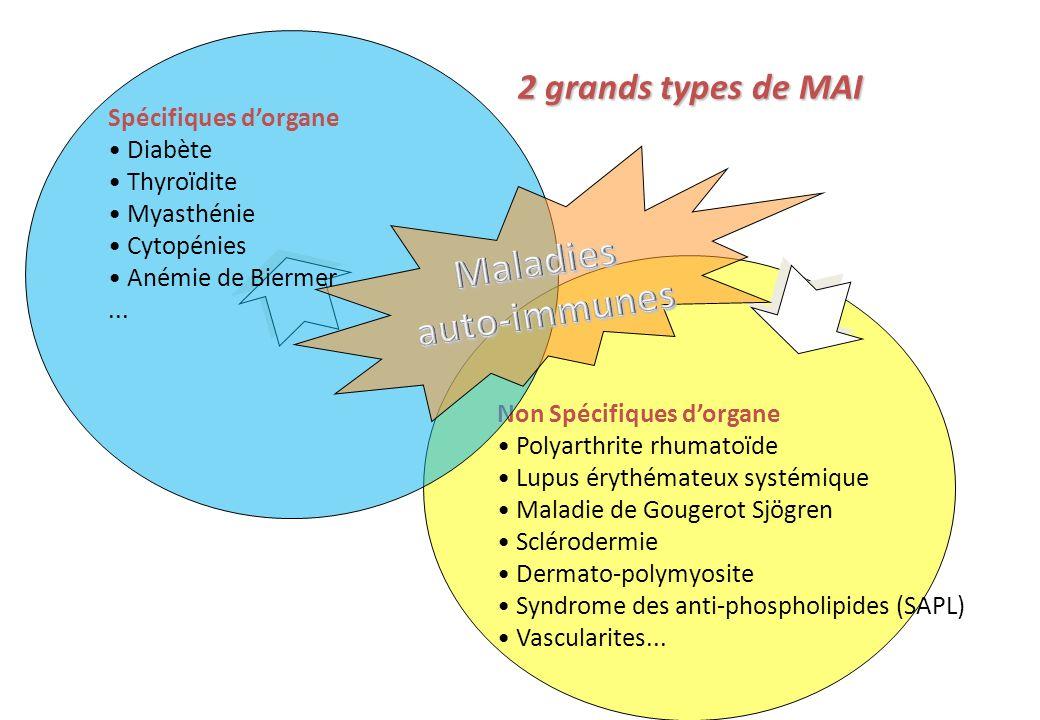 Traitement Diagnostic Évolution Pronostic ANA, Ac anti-ADN natif, anti-Sm, RNP, SSA, SSB, (ribosomes, PCNA), CH50, C4, APL… Ac anti-ADN natif (titres), CH50, C4 (SSA) Ac anti-ADN natif (titres) Formes cliniques Ac anti-ADN natif, CH50 : APL Ac anti-SS-A : Formes localisées, cutanéo-articulaires Complications de la grossesse Formes systémiques (graves) Attention .