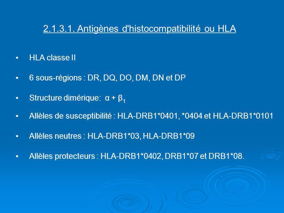 2.1.3.1. Antigènes d'histocompatibilité ou HLAHLA classe II6 sous-régions : DR, DQ, DO, DM, DN et DPStructure dimérique: α + β 1Allèles de susceptibil