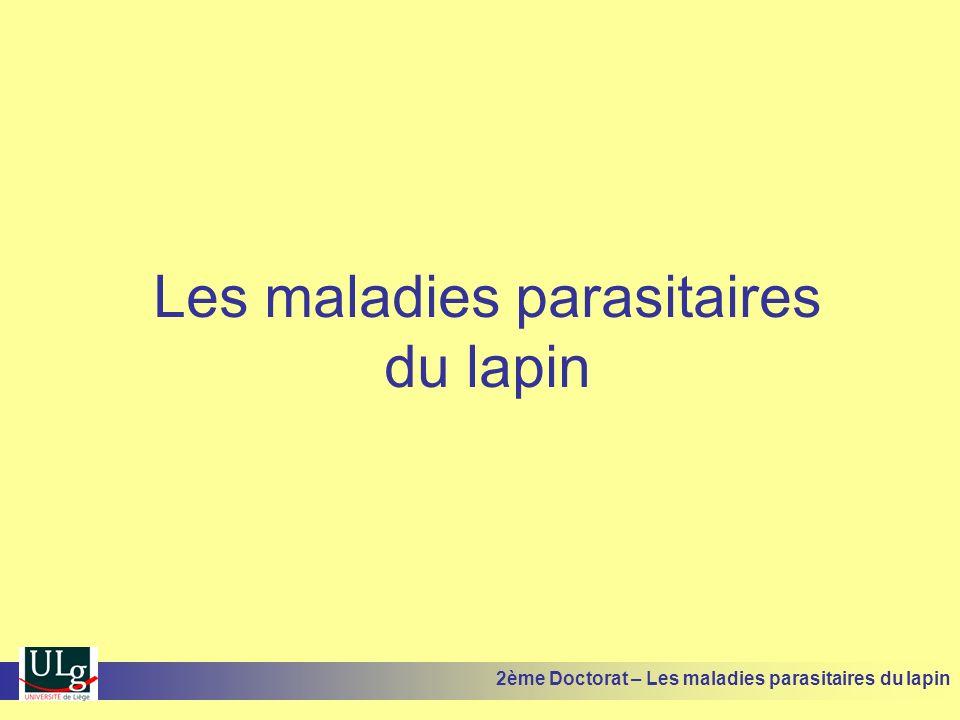 Les maladies parasitaires du lapin 2ème Doctorat – Les maladies parasitaires du lapin