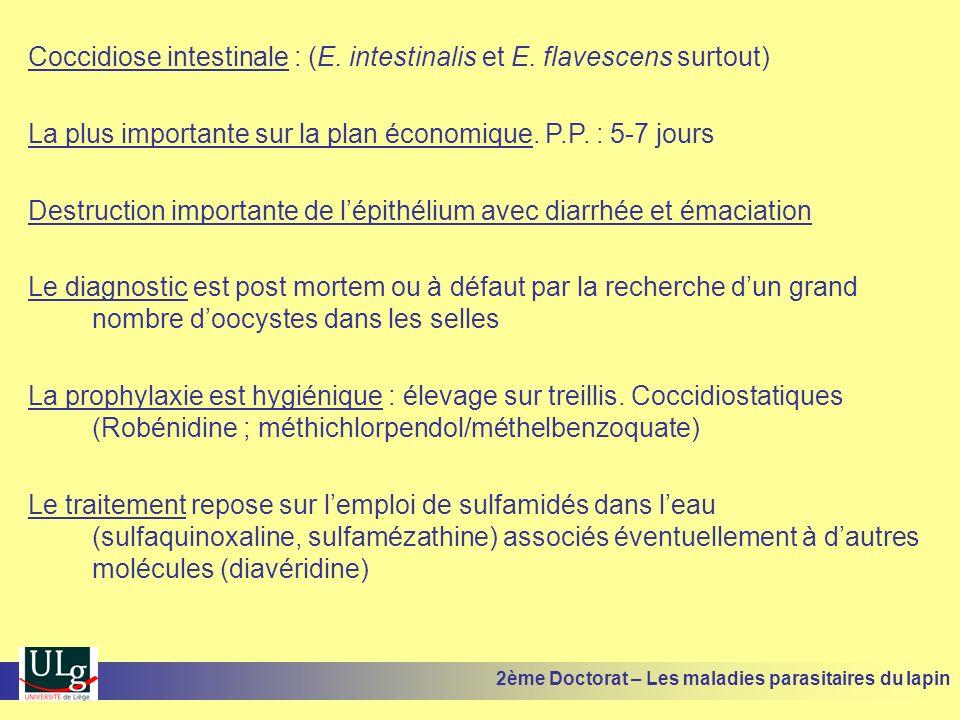 Coccidiose intestinale : (E. intestinalis et E. flavescens surtout) La plus importante sur la plan économique. P.P. : 5-7 jours Destruction importante