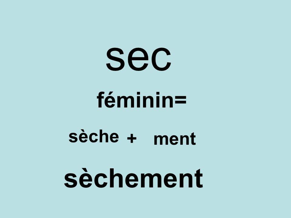sec féminin= sèche +ment sèchement