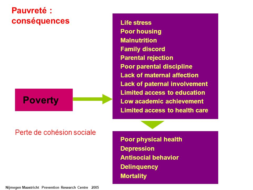 Nijmegen Maastricht Prevention Research Centre 2005 Poverty Poor physical health Depression Antisocial behavior Delinquency Mortality Life stress Poor