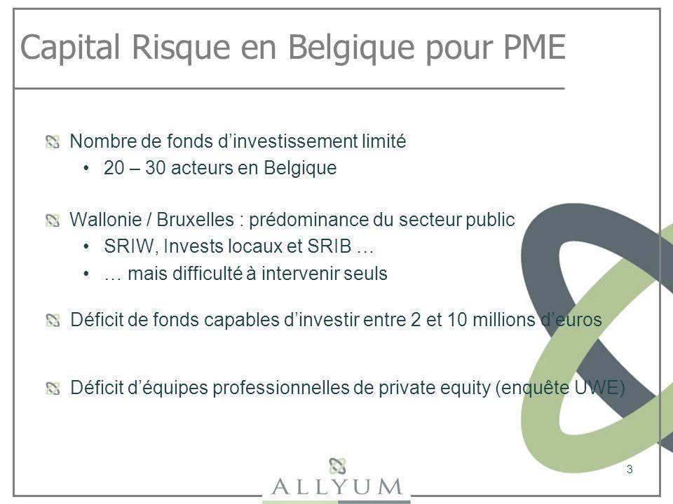 Capital Risque en Belgique pour PME Nombre de fonds dinvestissement limité 20 – 30 acteurs en Belgique 3 Wallonie / Bruxelles : prédominance du secteu