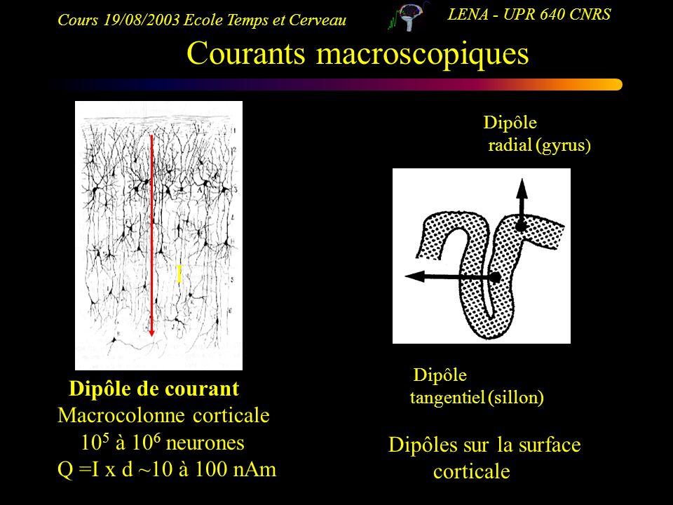 Cours 19/08/2003 Ecole Temps et Cerveau LENA - UPR 640 CNRS Dipôle de courant Macrocolonne corticale 10 5 à 10 6 neurones Q =I x d ~10 à 100 nAm I Cou