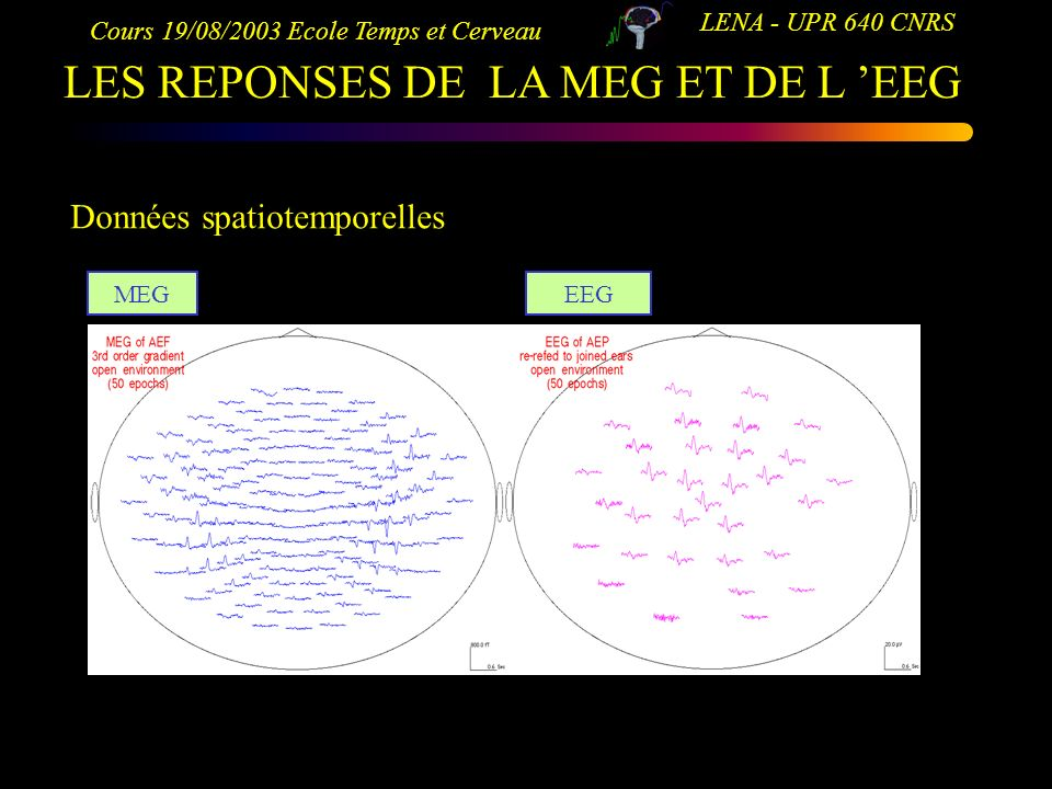 Cours 19/08/2003 Ecole Temps et Cerveau LENA - UPR 640 CNRS LES REPONSES DE LA MEG ET DE L EEG Données spatiotemporelles MEGEEG