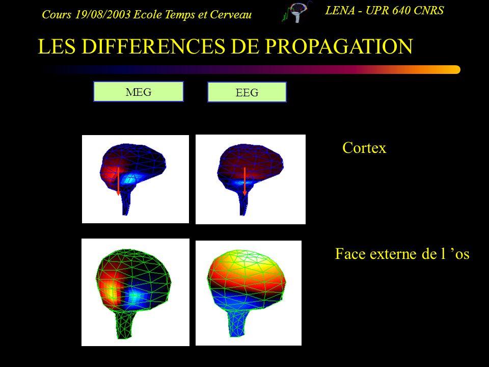 Cours 19/08/2003 Ecole Temps et Cerveau LENA - UPR 640 CNRS LES DIFFERENCES DE PROPAGATION MEG EEG Cortex Face externe de l os