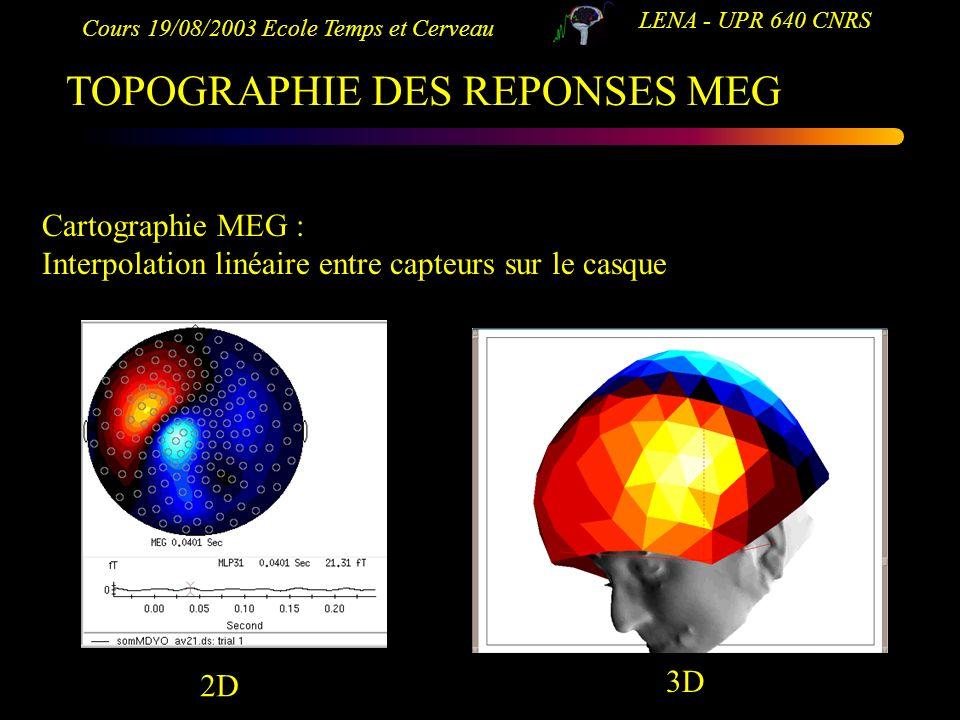 Cours 19/08/2003 Ecole Temps et Cerveau LENA - UPR 640 CNRS TOPOGRAPHIE DES REPONSES MEG Cartographie MEG : Interpolation linéaire entre capteurs sur