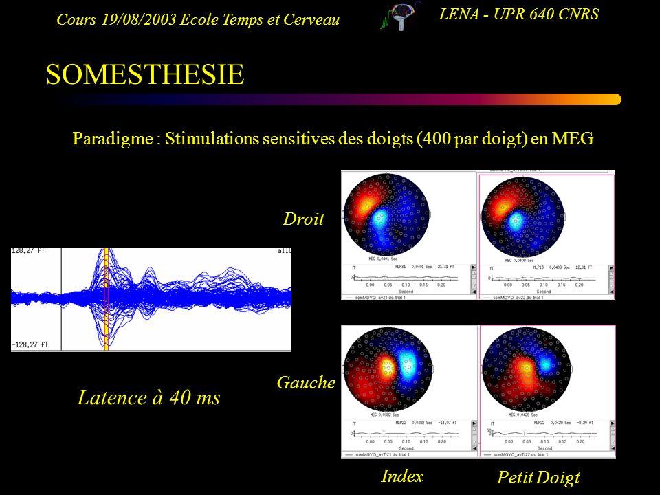 Cours 19/08/2003 Ecole Temps et Cerveau LENA - UPR 640 CNRS SOMESTHESIE Paradigme : Stimulations sensitives des doigts (400 par doigt) en MEG Droit Ga