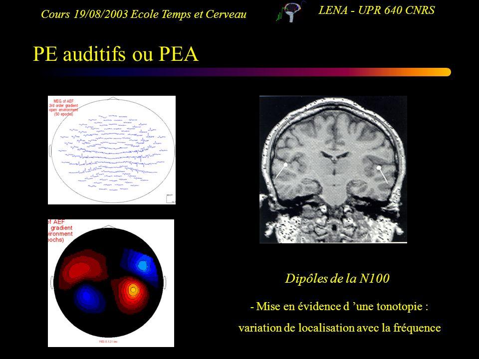Cours 19/08/2003 Ecole Temps et Cerveau LENA - UPR 640 CNRS PE auditifs ou PEA Dipôles de la N100 - Mise en évidence d une tonotopie : variation de lo