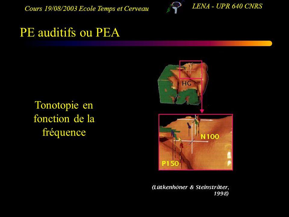 Cours 19/08/2003 Ecole Temps et Cerveau LENA - UPR 640 CNRS PE auditifs ou PEA Tonotopie en fonction de la fréquence