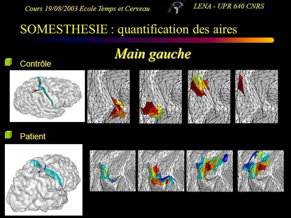 Cours 19/08/2003 Ecole Temps et Cerveau LENA - UPR 640 CNRS Main gauche Contrôle Patient SOMESTHESIE : quantification des aires