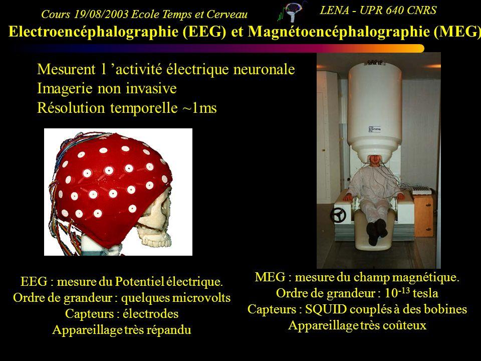 Cours 19/08/2003 Ecole Temps et Cerveau LENA - UPR 640 CNRS Electroencéphalographie (EEG) et Magnétoencéphalographie (MEG) EEG : mesure du Potentiel é