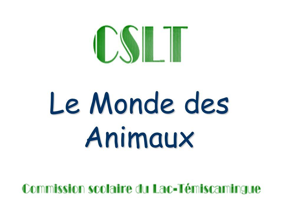Projet intégrant les TIC Les animaux qui me fascinent Réalisé par Mélanie Perron (stagiaire), en collaboration avec Françoise Morin-Richard (enseignante-associée)