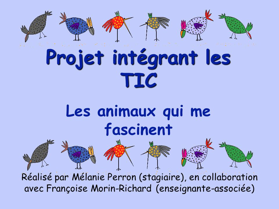 Il me fait réellement plaisir de vous présenter le résultat de mon projet informatique réalisé dans le cadre de mon quatrième stage en milieu scolaire à lécole Notre-Dame-de-Liesse, située à St-Eugène-de-Guigues, au Témiscamingue.