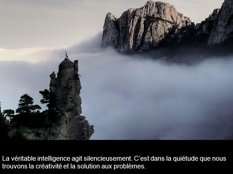 La véritable intelligence agit silencieusement.