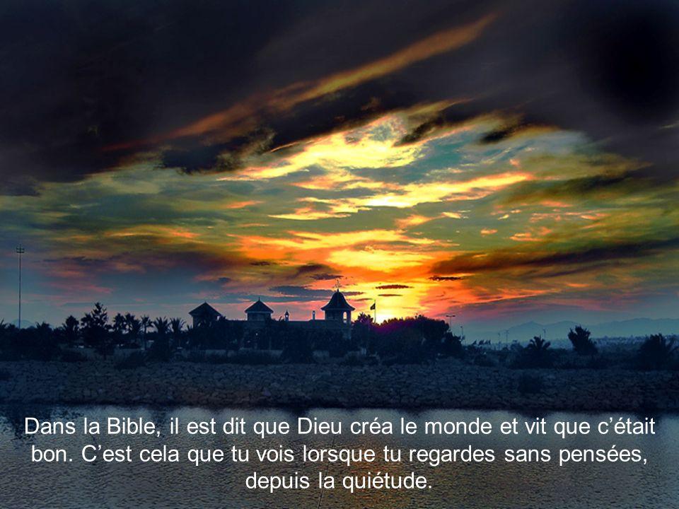 Dans la Bible, il est dit que Dieu créa le monde et vit que cétait bon.