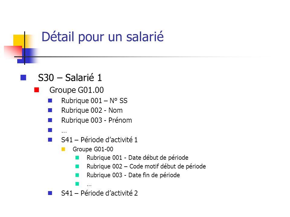 Détail pour un salarié S30 – Salarié 1 Groupe G01.00 Rubrique 001 – N° SS Rubrique 002 - Nom Rubrique 003 - Prénom … S41 – Période dactivité 1 Groupe