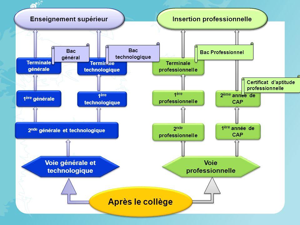Service Information et Conseil aux Familles Apel dIlle et Vilaine 45 rue de Brest – Rennes 02.99.33.75.13