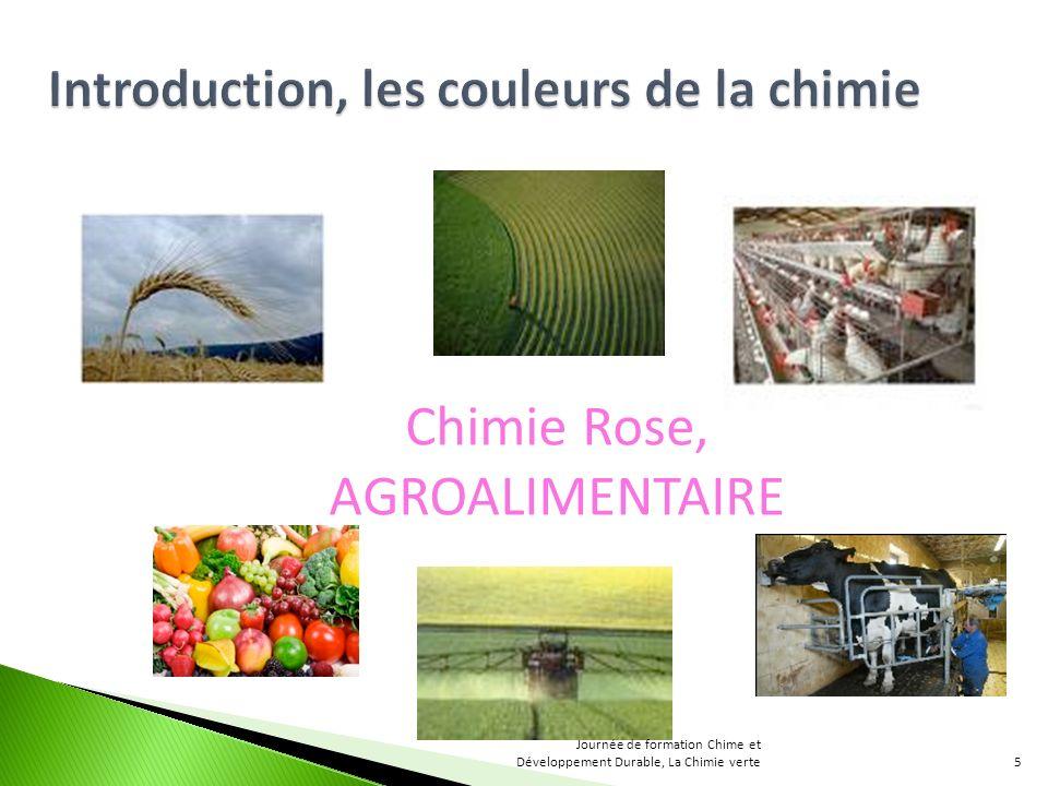 Chimie Rose, AGROALIMENTAIRE 5 Journée de formation Chime et Développement Durable, La Chimie verte