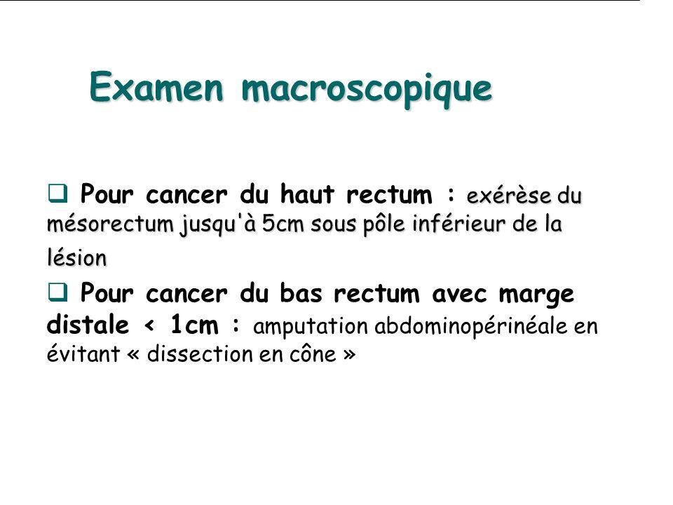 exérèse du mésorectum jusqu'à 5cm sous pôle inférieur de la lésion Pour cancer du haut rectum : exérèse du mésorectum jusqu'à 5cm sous pôle inférieur