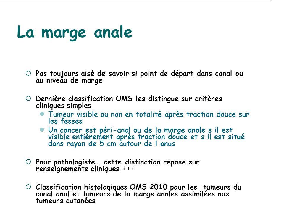 La marge anale Pas toujours aisé de savoir si point de départ dans canal ou au niveau de marge Dernière classification OMS les distingue sur critères