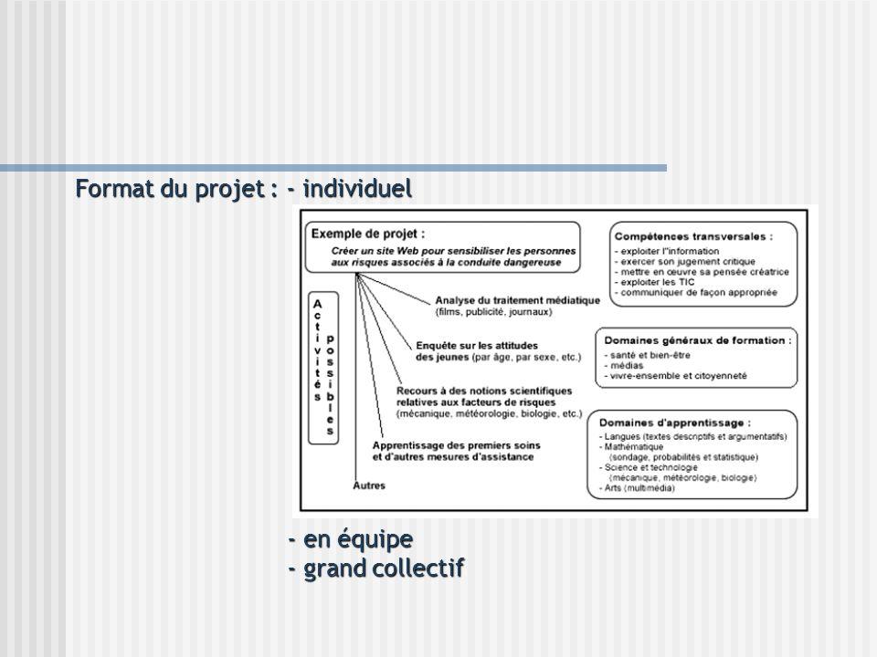 Format du projet : - individuel - en équipe - grand collectif - en équipe - grand collectif