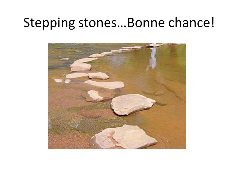 Stepping stones…Bonne chance!
