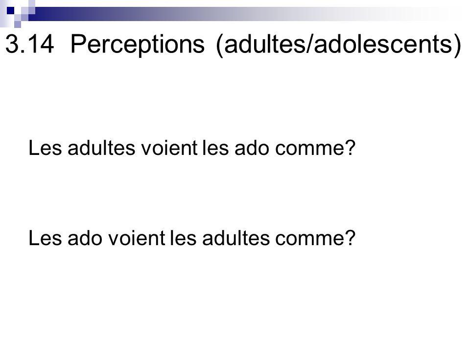 3.14 Perceptions (adultes/adolescents) Les adultes voient les ado comme.