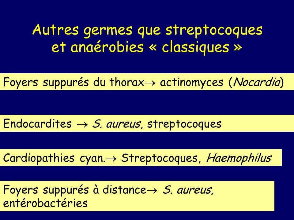 Autres germes que streptocoques et anaérobies « classiques » Foyers suppurés du thorax actinomyces (Nocardia) Endocardites S. aureus, streptocoques Ca