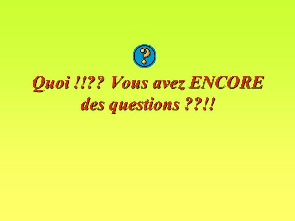 Quoi !! Vous avez ENCORE des questions !!