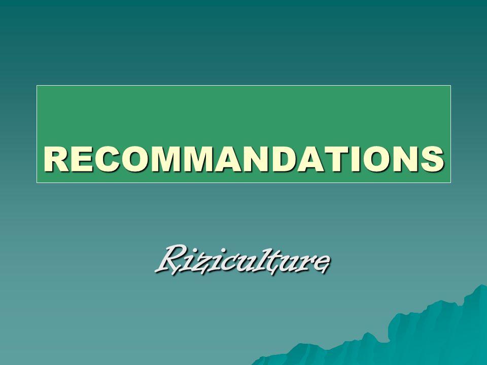RECOMMANDATIONS Riziculture