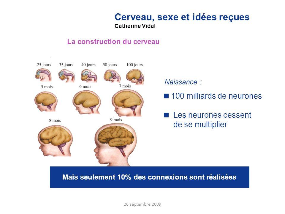 Cerveau, sexe et idées reçues Catherine Vidal La construction du cerveau Naissance : 100 milliards de neurones Les neurones cessent de se multiplier M