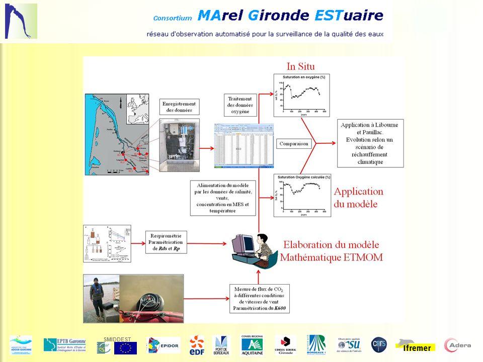 Future evolution : ETMOM MODEL (Estuarine Turbidity Maximum Oxygen Model) Bordeaux station