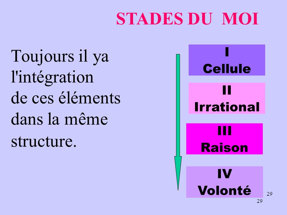 28 VOLONTE LE MOI INTELLECT ACTION VOLONTAIRE LIVRE ELECTION ET MISE EN ŒUVRE MOTIFS agressivité DESIRE REACTION ESTIMATIONS COMPRENDRE MÉMOIRE IMAGIN